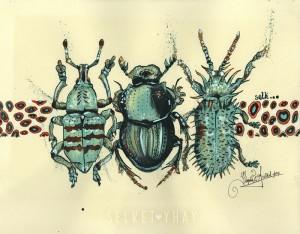 Selket-Yhay-Escarabajos